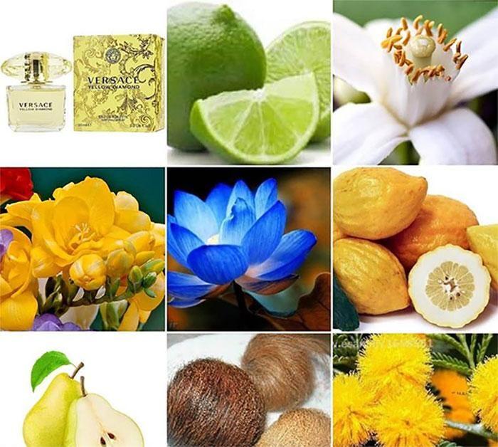 Hương thơm Versace Yellow Dianmond 50ml tinh khiết tự nhiên