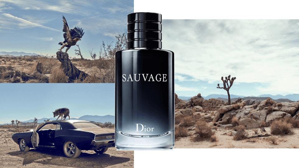 Giới thiệu nước hoa Dior Sauvage EDT 100ml Nam
