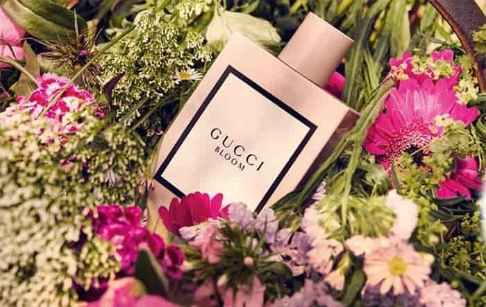 Lịch sử chai nước hoa Gucci Bloom EDP Nữ