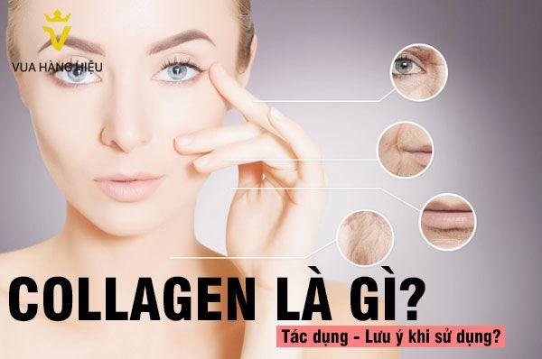 Tìm hiểu về Collagen và công dụng