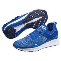 Giày Thể Thao Puma Ignite EvoKnit Traning (Xanh Blue)
