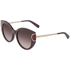 Kính Mát Salvatore Ferragamo Brown Gradient Oval Ladies Sunglasses